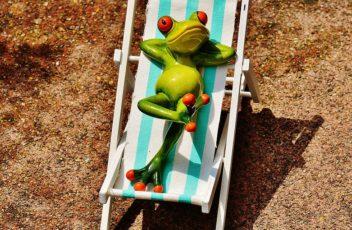 pohodová žába
